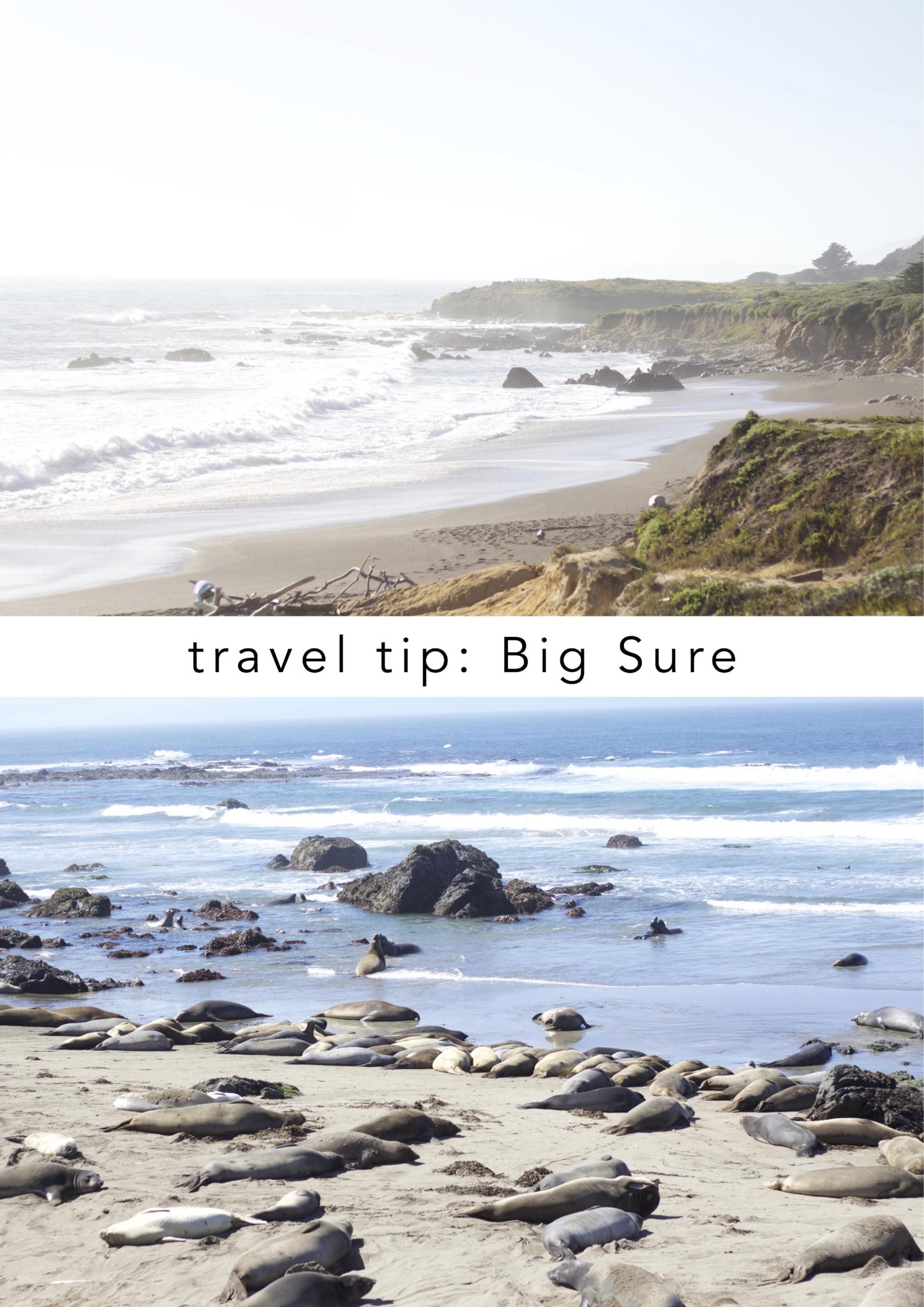 """Beitrag: """"travel thoughts: Wenn du bereits am ersten Tag angekommen bist"""" mit Reisetipps Highways Nummer 1 und 101 entlang der kalifornischen Küste - Reisetipps Big Sure und die See Elefanten"""