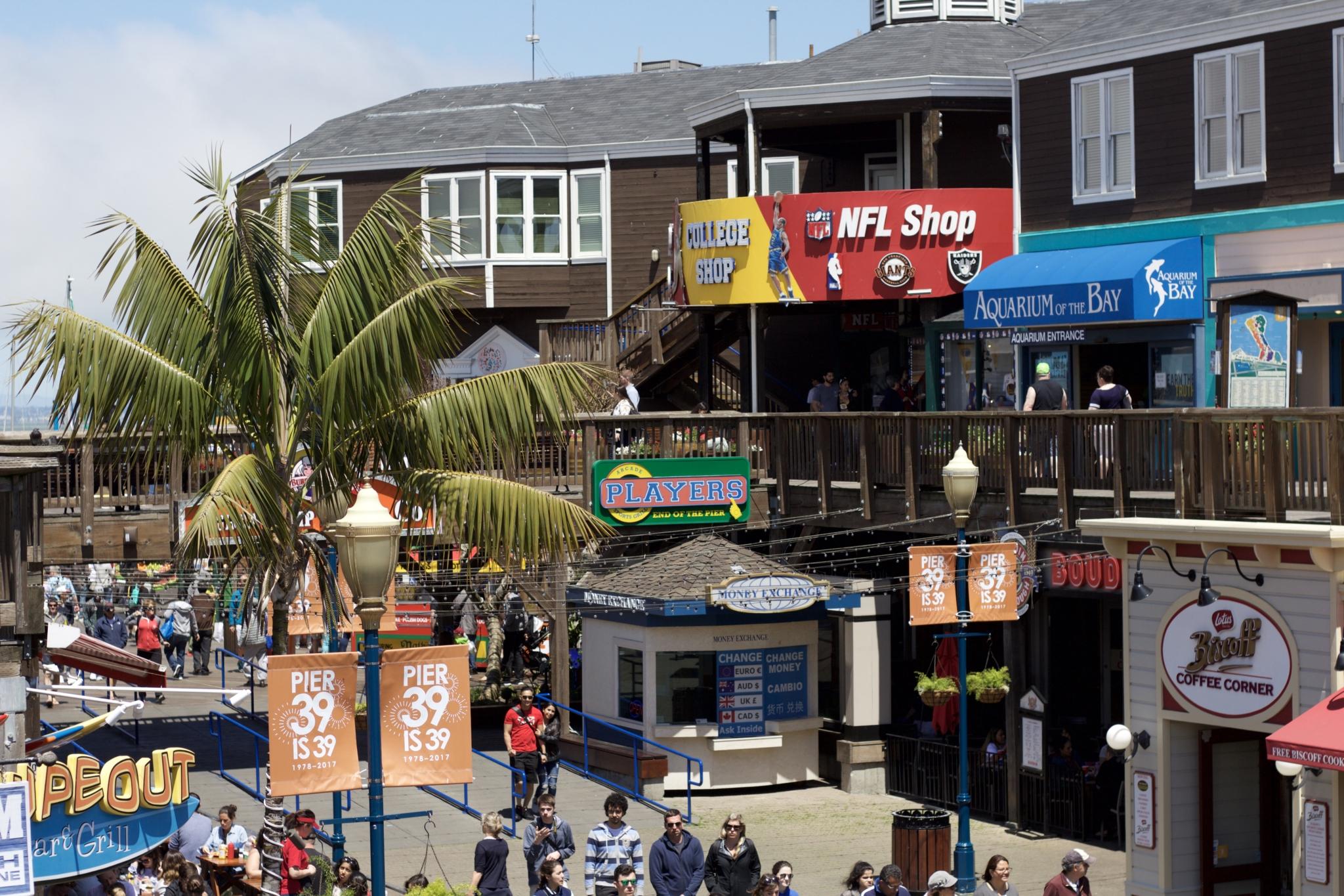 Ein Tag am Pier 39 in San Francisco - Erlebnisse und 5 Tipps für einen Tag am Pier 39 - Reise Blogger Tipps - Bild 3