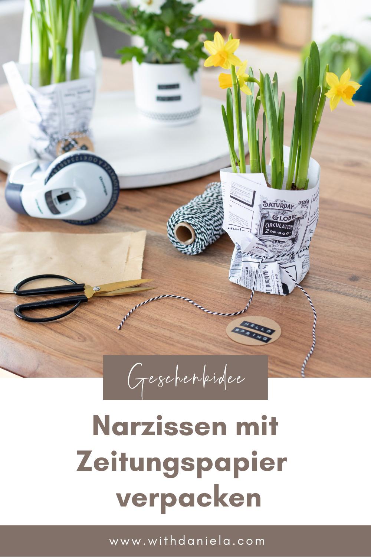 Geschenkidee: Narzissen mit Zeitungspapier verpacken